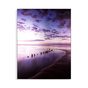 Metallic Serenity Shores Printed Canvas, , large