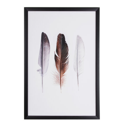 Feather Trio Framed Print, , large