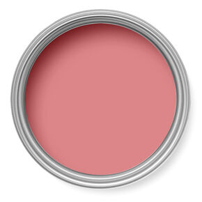 Northern Rose Paint, , large