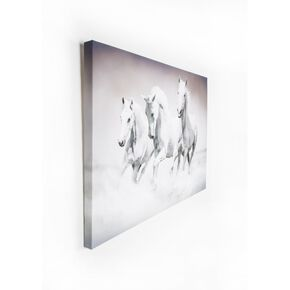 Galloping Waves Printed Canvas, , large