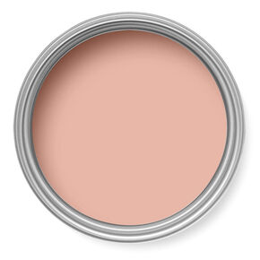 Darcy Paint, , large