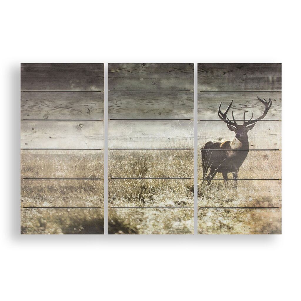Highland Stag Print On Wood Grahambrownuk