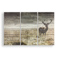 Highland Stag Print On Wood, , large