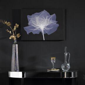 X-Ray Rose Wall Art, , large