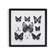Butterfly Studies Framed Print, , large