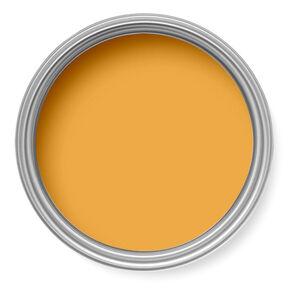 Orange Zest Paint, , large