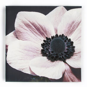 Curio Floral With Glitter Printed Canvas, , large