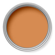 Gingernut Paint, , large