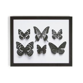 Botanical Butterflies Framed Print, , large
