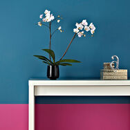 Lille Pink - Paint by Graham & Brown, , large