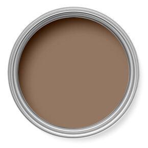 Hazelnut Paint, , large