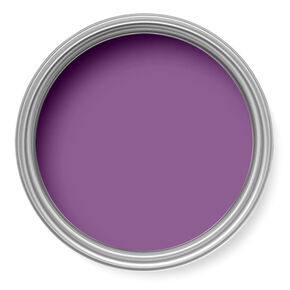 Allium Paint, , large