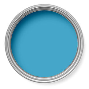 Bluebird Paint, , large