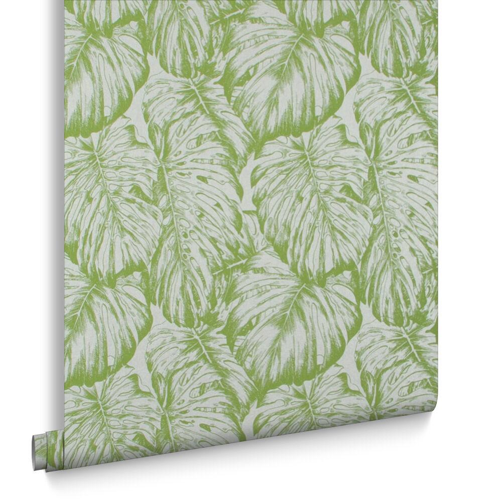 Tropical Parakeet Wallpaper, , Large ...