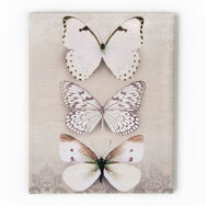 Schmetterling Trio Bedruckter Canvas, , large