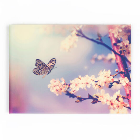 butterfly printed canvas branch wall art graham brown. Black Bedroom Furniture Sets. Home Design Ideas