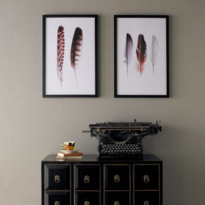 Feather Duo Framed Print, , large
