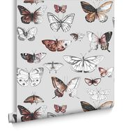 Butterflies Orange Wallpaper, , large