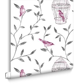 Birds and Cages Hot Pink and Charcoal Wallpaper, , large