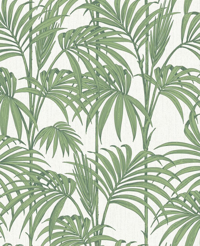 Honolulu palm green wallpaper palm tropical leaf wallpaper - Groen behang van het water ...