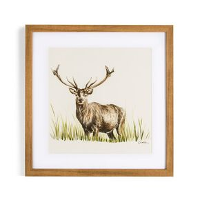 Countryside Stag Framed Print, , large