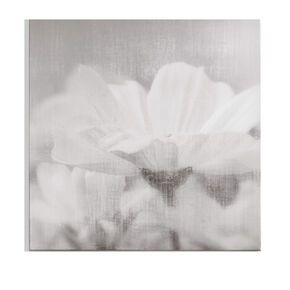 Daisy Daydreams Printed Canvas, , large