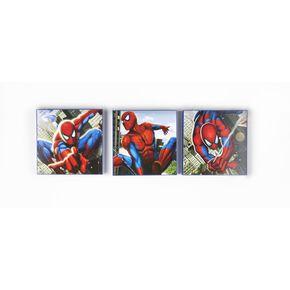 Spiderman Set van 3 Blokkunst, , large