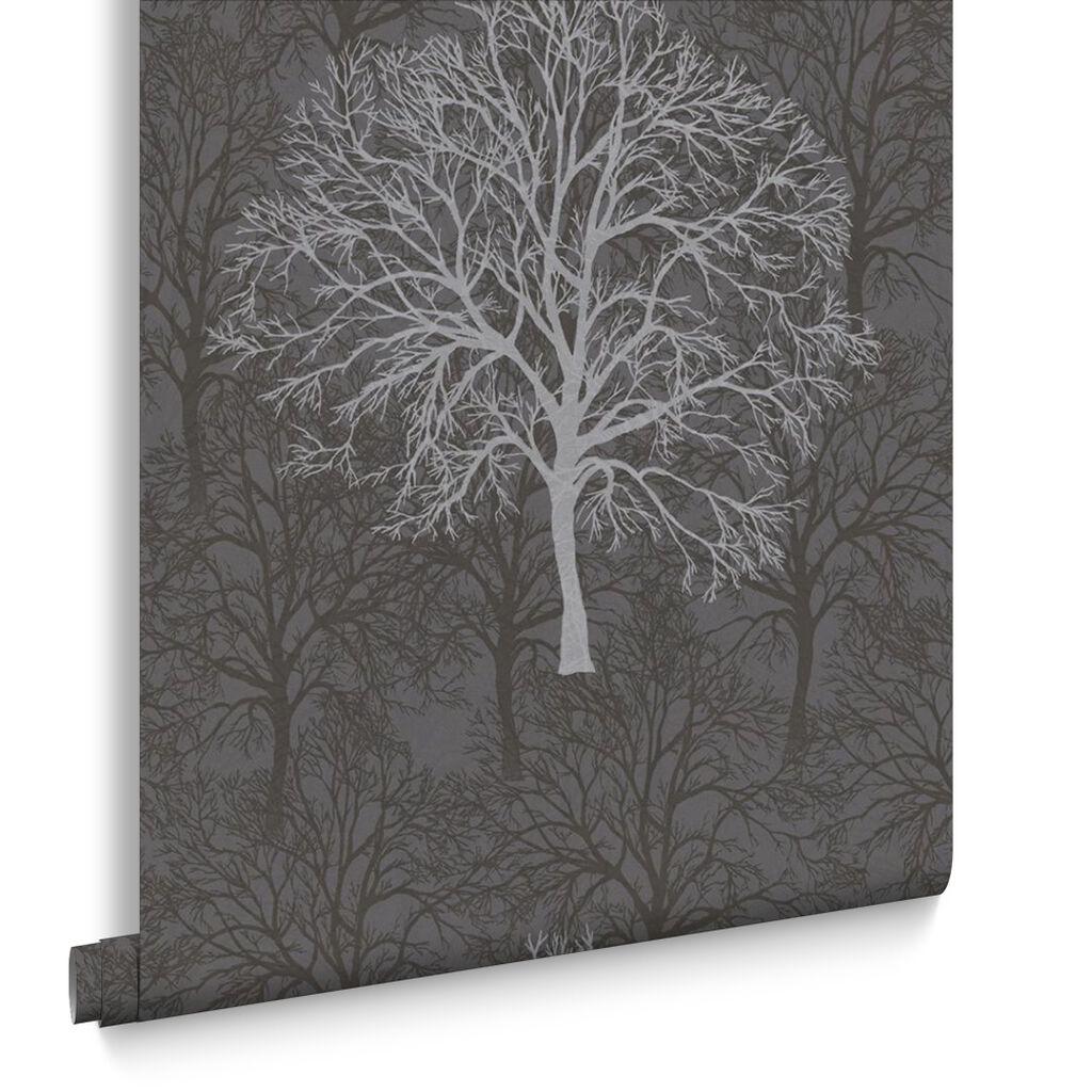 Enchant Black Wallpaper GrahamBrownUK