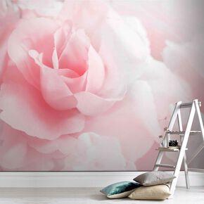 Pink Rose Mural, , large