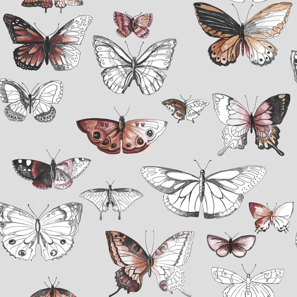 Butterflies Orange Wallpaper Graham Brown