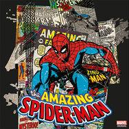 Verbazingwekkende Spiderman, , large