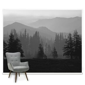 Floral forest wall murals graham brown for Black and white forest wall mural