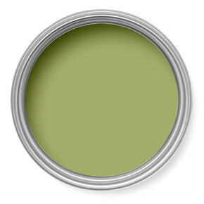 Funky Lime Paint, , large