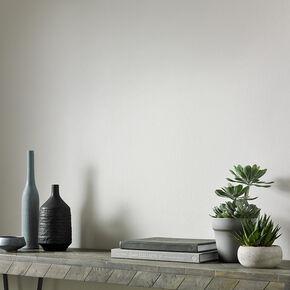 Barker Grey Paint, , large