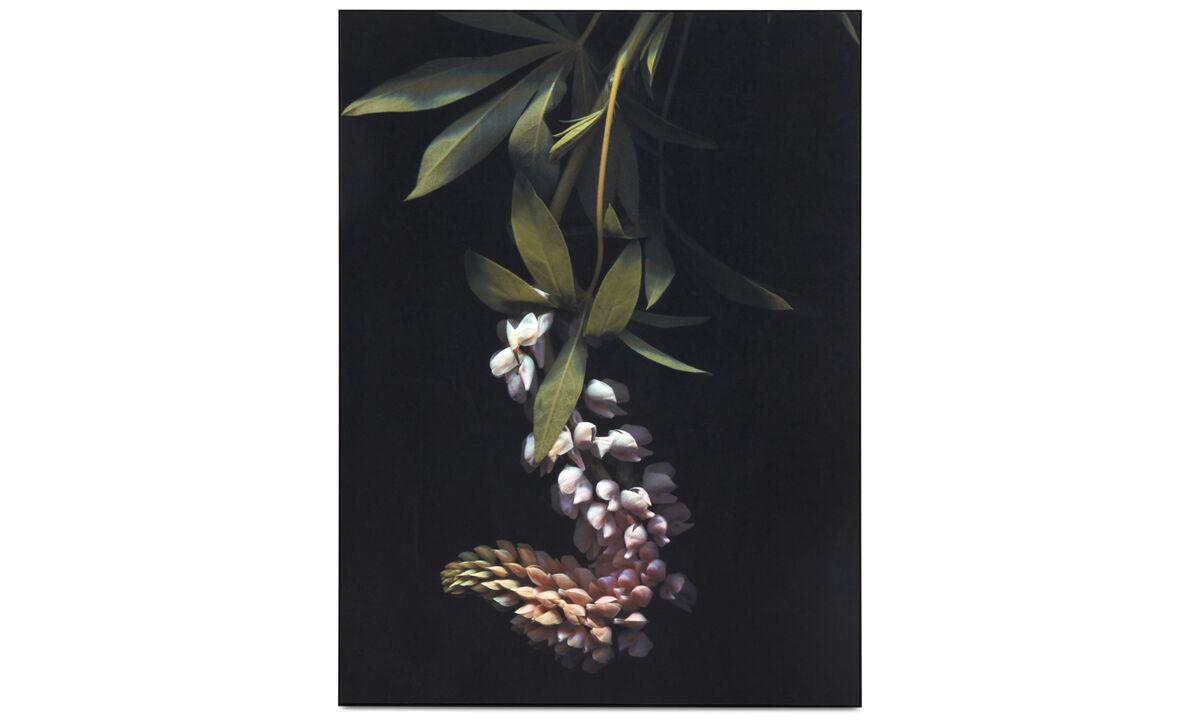 Galeria - Obraz Herbarium I - Czarny - Metal