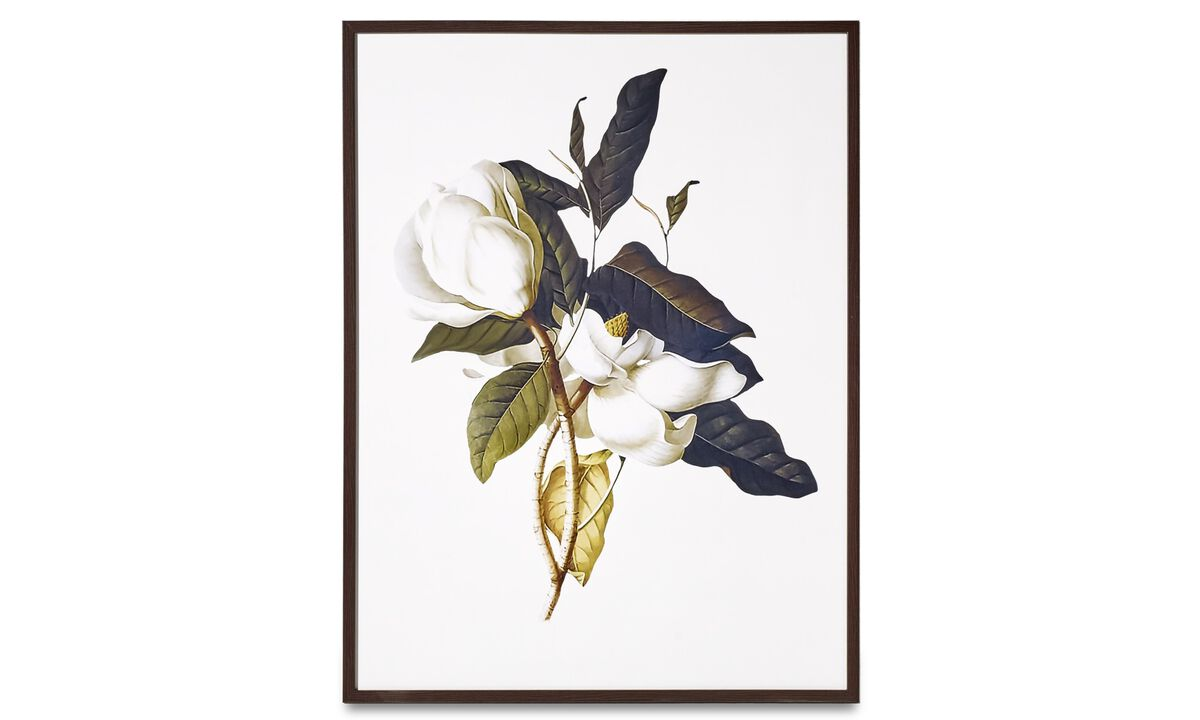 Paintings - Magnolia framed art - Cardboard
