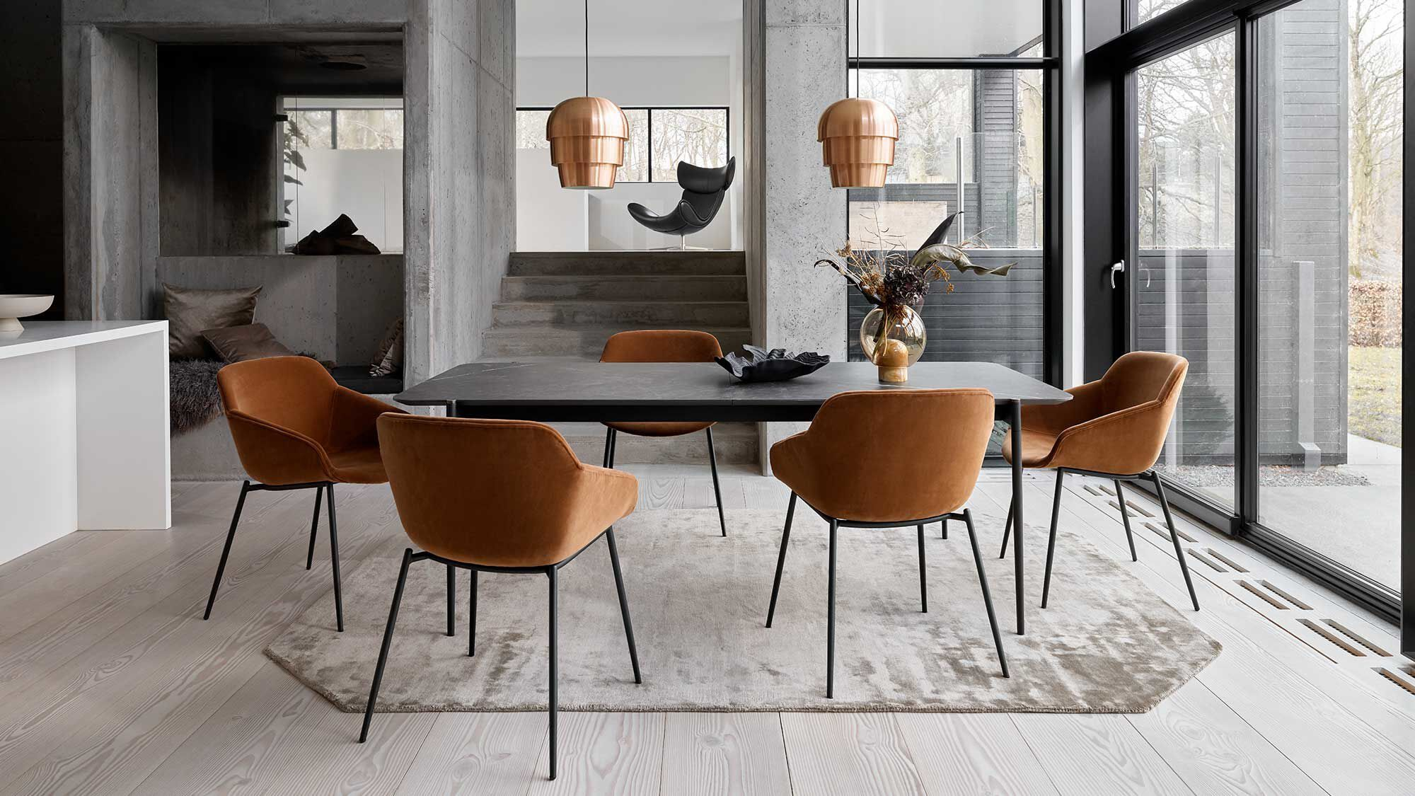 Dining chairs - Vienna chair
