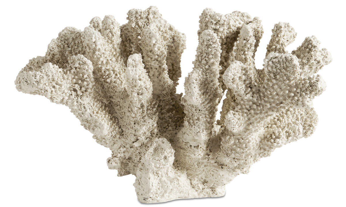 Decoration - Belize coral sculpture - Brown - Plastic