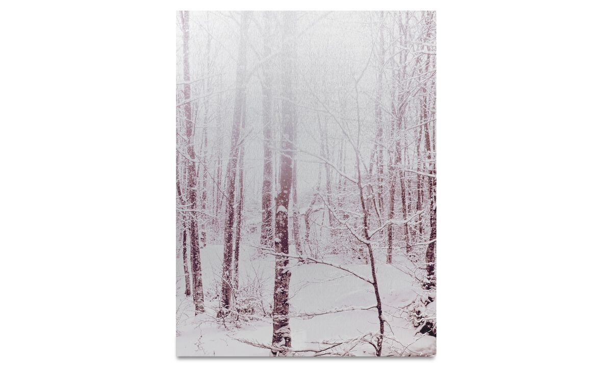 Paintings - White forest metal print - Metal